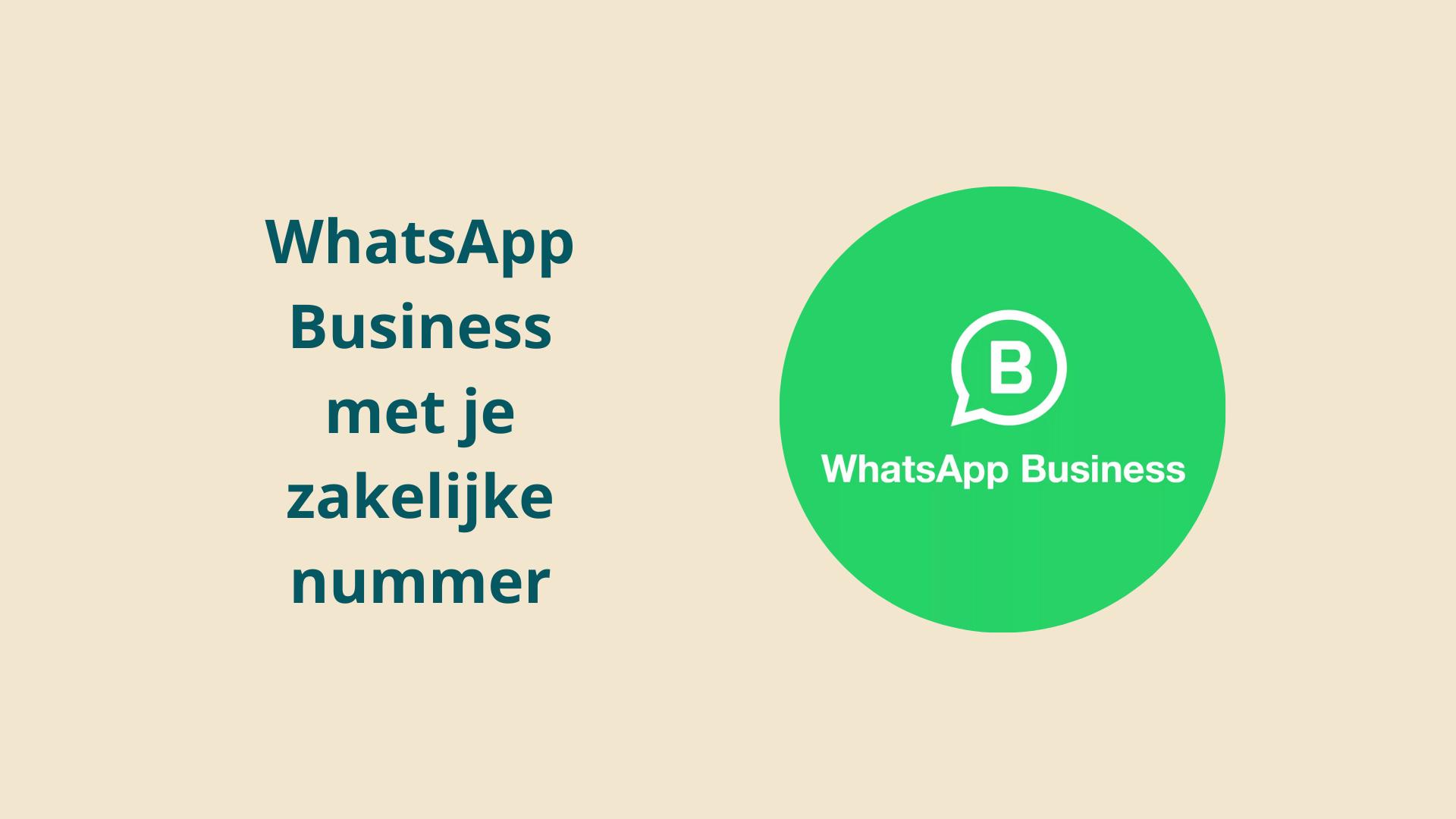 Dubline Zakelijk WhatsApp